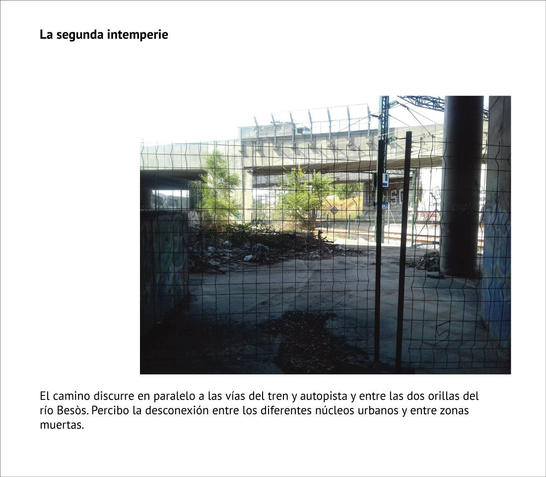 Projecte Teresa Picazo 02