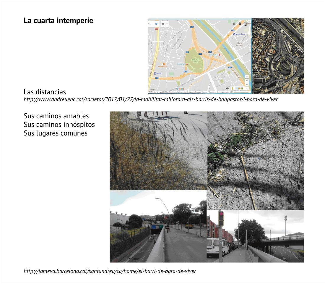 Projecte Teresa Picazo 04
