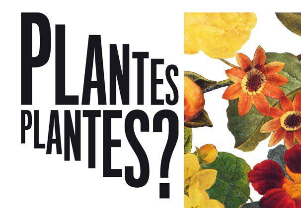 flyer plantes plantes